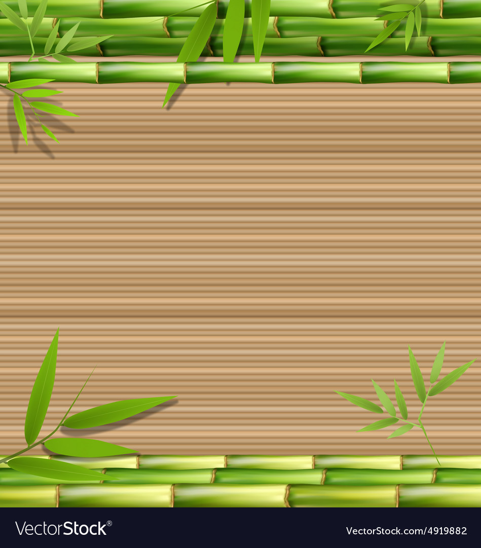 Green bamboo grass on brown vector