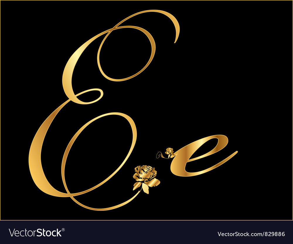 Gold letter e with roses vector