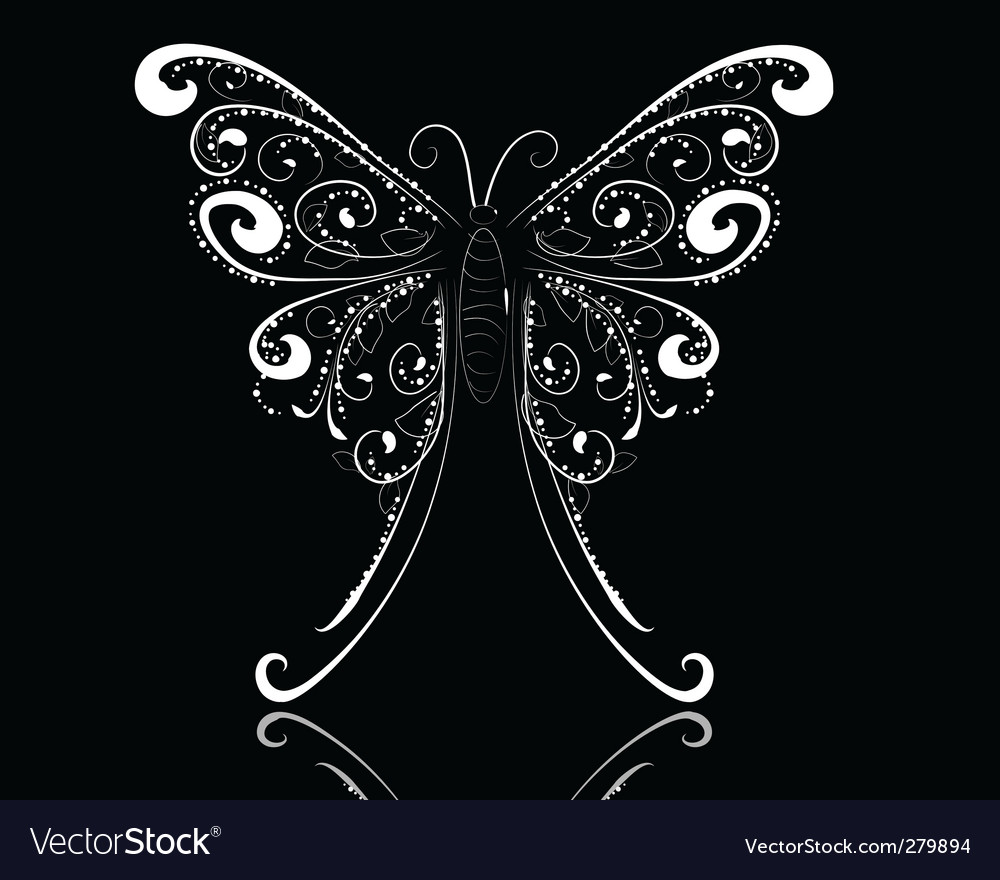 Lace butterfly vector