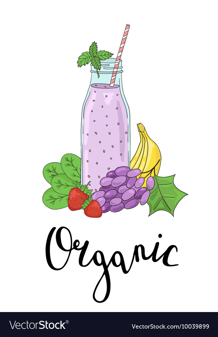 Bottle smoothies with fruits vegetables and the vector