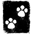 Traces Of The Animal On Pavement vector image vector image