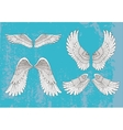 hand drawn white wings vector image vector image