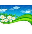 Summer meadow background vector image