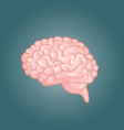 Human brain views Top frontal side three-quarter vector image