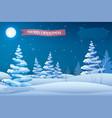 winter holidays night template vector image