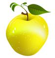 juicy apple vector image