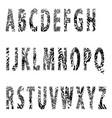 alfabet-relief letter vector image