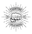 Hipster emblem about fighting club vector image