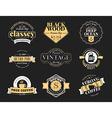 Set of Retro Vintage Badges and Logotypes design vector image