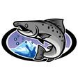 salmon mascot vector image vector image