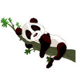Panda sleeping on a branch vector image
