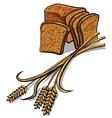 rye bread vector image vector image