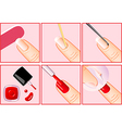 professional manicure vector image
