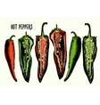 Set of hot peppers vector image