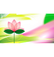 Lotus blossom background or card vector image