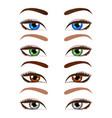 set of cartoon beautiful women eyes and eyebrows vector image