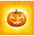 Sunburst Halloween Background vector image