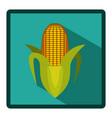 corn cob icon image vector image