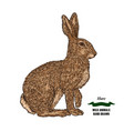 forest animal hare or rabbit hand drawn colored vector image