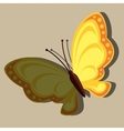 beautiful butterfly design vector image