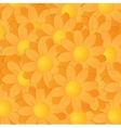 Yellow And Orange Gerberas vector image