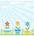 flower pots background vector image vector image
