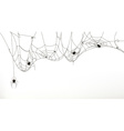 Spiders and spider web set vector image vector image