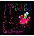 night club bunny girl vector image