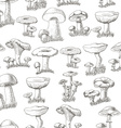 Seamless pattern with mushrooms on a white vector image
