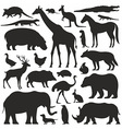Animals silhouette set vector image