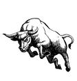 Bull 3 vector image