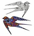 swallow hand drawing colorful and vector image