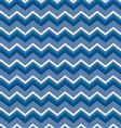 Chevron blues vector image