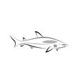 stylized shark vector image