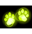animal neon light vector image