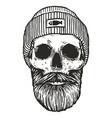 fisherman skull with hat vector image