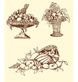 Hand drawn fruits vector image