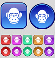 Monkey icon sign A set of twelve vintage buttons vector image