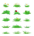 set of tufts of grass vector image