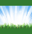 spring or summer sunrise grass landscape vector image
