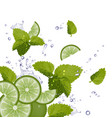 Fresh Mojito Ingredients Background vector image