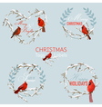 Vintage Christmas Winter Birds - Banners Tags vector image