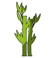 bamboo plant icon vector image