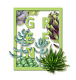 succulent green frame vector image