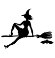 witch bat vector image