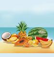 fruits tasty fresh beach sand vector image