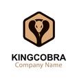 King Cobra Design vector image