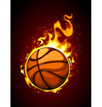 Burning basketball vector image