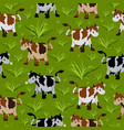 seamless cow pattern vector image