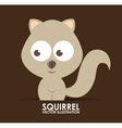 squirrel design vector image